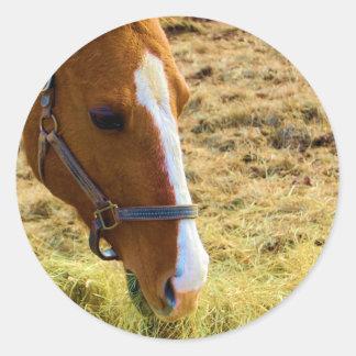 Hay! Classic Round Sticker