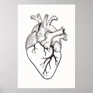 Heart Illustration Poster