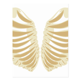 Heart Shaped Rib Cage Postcard