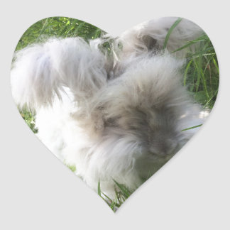 "Heart Stickers - English Angora Rabbit ""Bradley"""