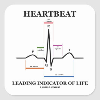 Heartbeat Leading Indicator Of Life (ECG/EKG) Square Sticker