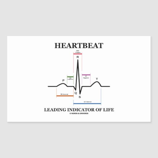 Heartbeat Leading Indicator Of Life (ECG/EKG) Rectangle Sticker