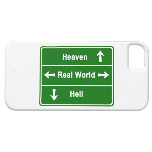 Heaven, real world & hell iPhone 5 cases