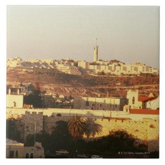 Hebrew University, Jerusalem Tile