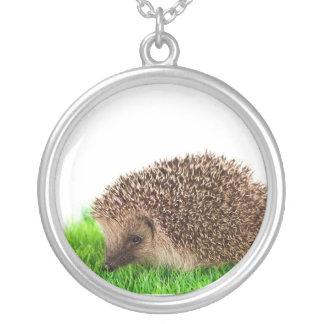 hedgehog, necklace