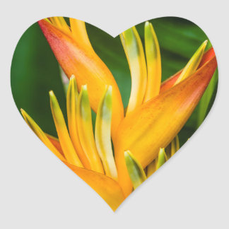 Heliconia Bird of Paradise Flower Photography Heart Sticker