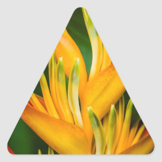Heliconia Bird of Paradise Flower Photography Triangle Sticker