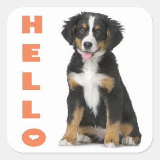 Hello Bernese Mountain Puppy Dog Sticker / Seal