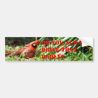 Hello Cardinal Bumper Sticker