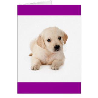 Hello Golden Retriever Puppy Dog Greeting Card