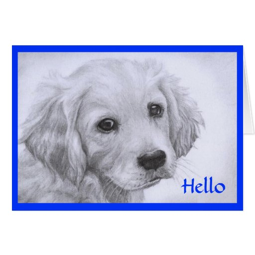 Hello Golden Retriever Puppy Drawing Greeting Card