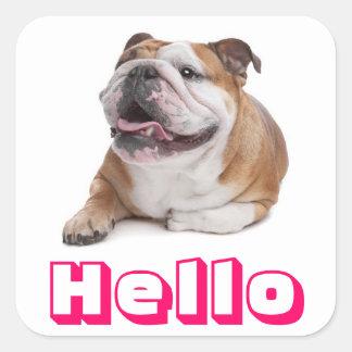 Hello Happy Bulldog Puppy Dog Greeting Sticker