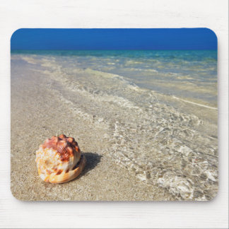 Helmet Shell In Tropical Lagoon| Cassis Rufa Mouse Pad