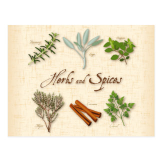 Herbs and Spices, Rosemary, Sage, Thyme, Cinnamon Postcard