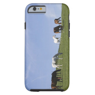 herd of horses on meadow tough iPhone 6 case