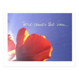 Here comes the sun poppy postcard postcards