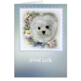 Hermes the Maltese 'Good Luck' Greeting Card