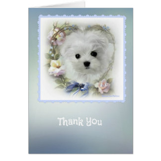 Hermes the Maltese Thank You Card
