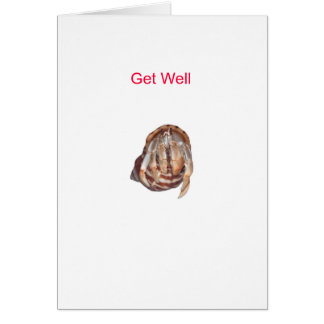 Hermit Crab Get Well Greeting Card