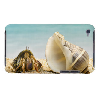 Hermit crab looking at larger shell barely there iPod cover