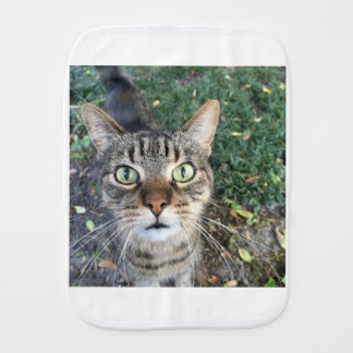 """""""Hey you"""" says this Cat Burp Cloth"""