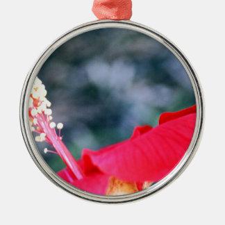 Hibiscus 4 christmas tree ornament