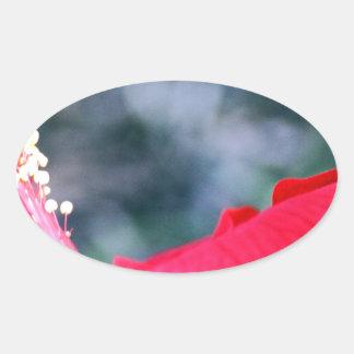 Hibiscus 4 oval sticker