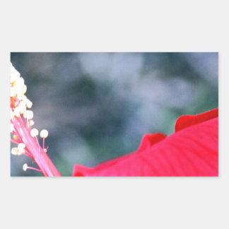 Hibiscus 4 rectangular sticker