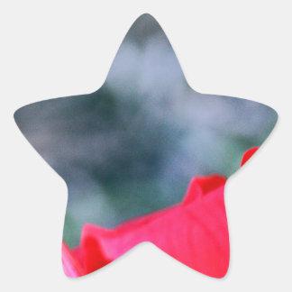 Hibiscus 4 star sticker