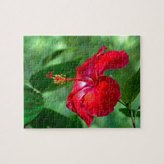 Hibiscus Blossom Jigsaw Puzzle