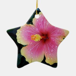 Hibiscus Hawaiian Flower Ceramic Star Decoration