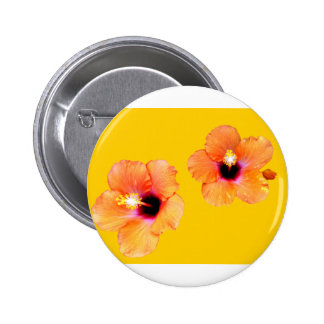 Hibiscus Orange Gold bg The MUSEUM Zazzle Gifts Buttons