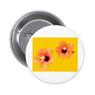 Hibiscus Orange Gold bg The MUSEUM Zazzle Gifts Pinback Buttons