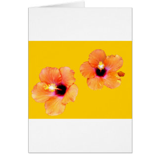 Hibiscus Orange Gold bg The MUSEUM Zazzle Gifts Card