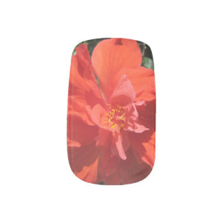 Hibiscus Red Flowering Plant Minx Nail Art