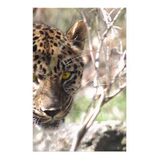 Hiding Leopard Stationery