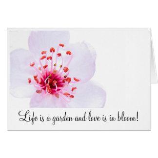 high-key-sakura-blossom-800, Life is a garden a... Note Card