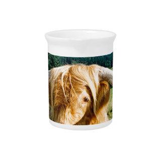 Highland cow pitcher