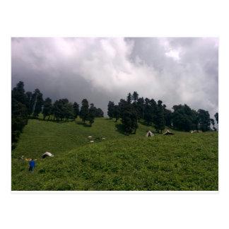 Himalayan Meadows Postcard