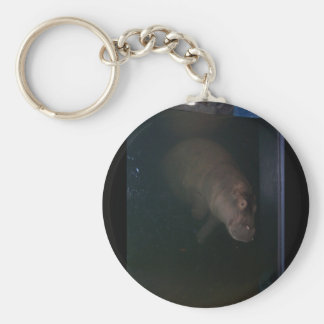 Hippopotamus Abstract #4 Key Ring