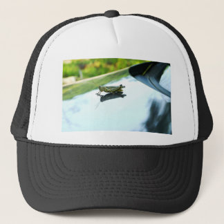 hitch hiking grasshopper trucker hat
