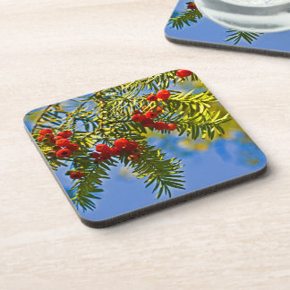 Holiday Conifers Coaster