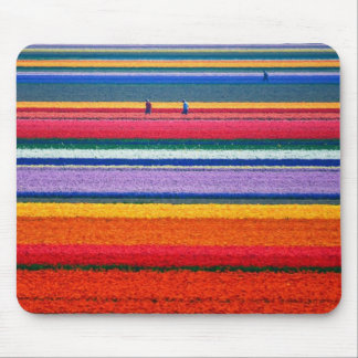 Holland, Tulip fields Mouse Pad