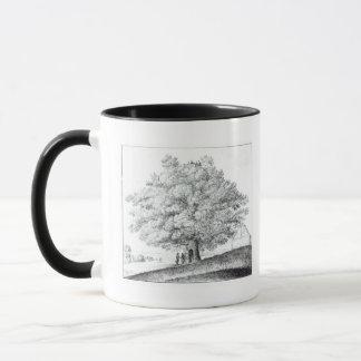 Hollow Tree at Hampstead, 1663 Mug