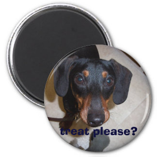 homer, treat please? 6 cm round magnet