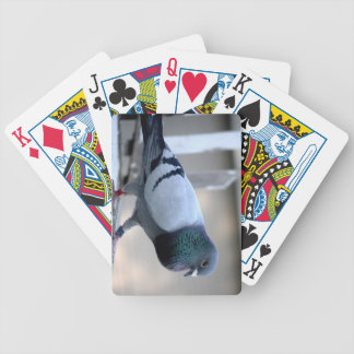 Homing Pigeon on the Loft Playing Cards