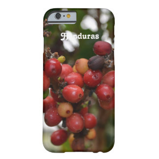 Honduras Coffee Beans Barely There iPhone 6 Case