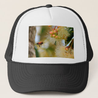 HONEY BEE RURAL QUEENSLAND AUSTRALIA TRUCKER HAT