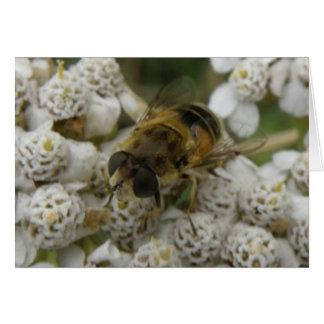 Honeybee and Flowers Greeting Card