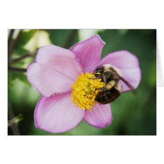 HoneyBee on a Pink Flower Valentine Card